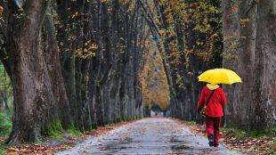 Prognoza pogody na pięć dni: nadchodzi plucha i huraganowy wiatr