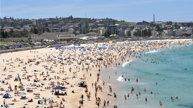 Prawie 50 stopni w Australii. Uciekali przed piekielnym upałem, nie żyją